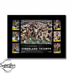 Richmond Tigerland Triumph